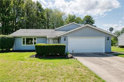 Solon OH Single Family Home For Sale: $225,000