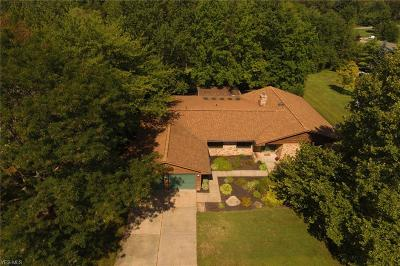 Kent Single Family Home Active Under Contract: 7775 Windy Hill Drive