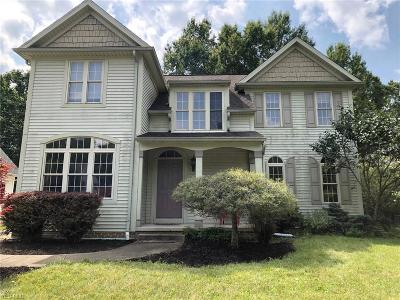 Hudson Single Family Home Active Under Contract: 26 Rachels Way