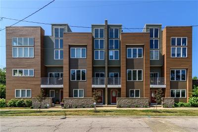 Cleveland OH Condo/Townhouse For Sale: $459,900