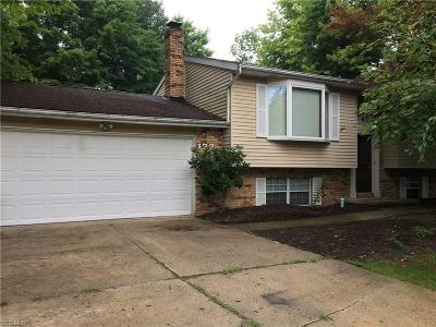 Geneva Single Family Home For Sale: 179 Maplelane Drive
