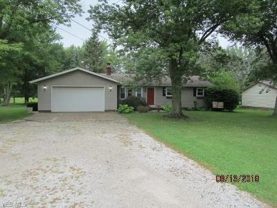 Medina Single Family Home Active Under Contract: 7615 Spencer Lake Road