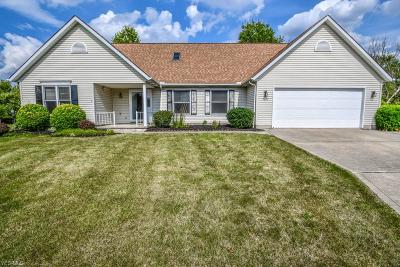 Strongsville Single Family Home For Sale: 19452 Overland Park Drive