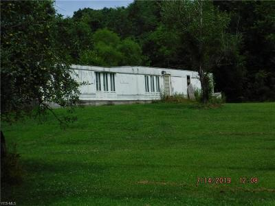 Guernsey County Single Family Home For Sale: 71677 Broadhead Road