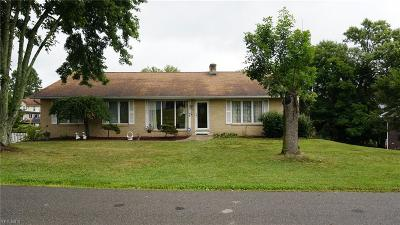 Byesville Single Family Home For Sale: 46 Primrose Drive