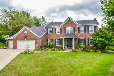 Stark County Single Family Home For Sale: 2516 Tamworthy Circle