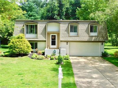 Aurora Single Family Home For Sale: 10253 Smugglers Cove