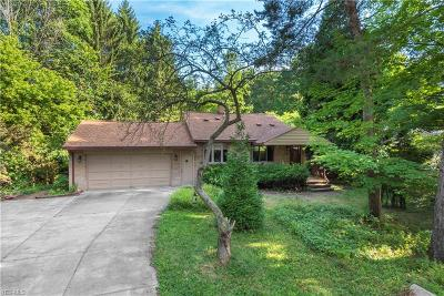 Westlake Single Family Home For Sale: 23514 Westwood Road