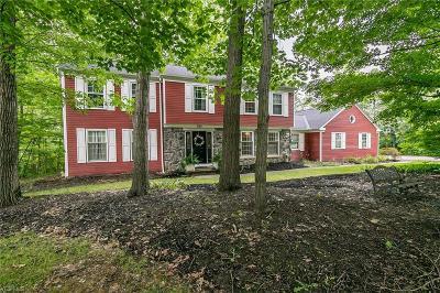 Hudson Single Family Home For Sale: 7181 Huntington Road