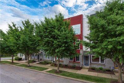 Cleveland Condo/Townhouse For Sale: 7311 Battery Park Boulevard
