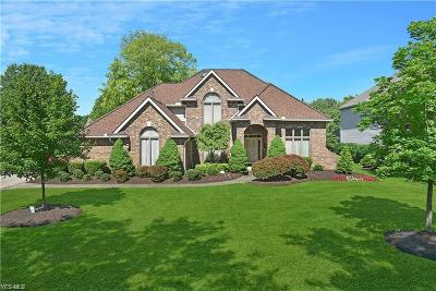 Brecksville Single Family Home For Sale: 6983 Crystal Creek Drive