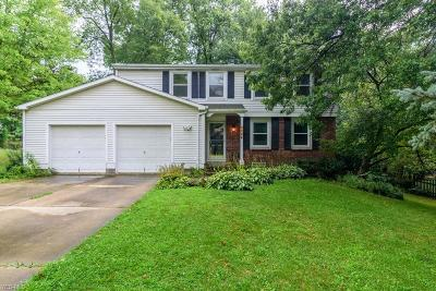 Macedonia Single Family Home For Sale: 1188 Brookpoint Drive