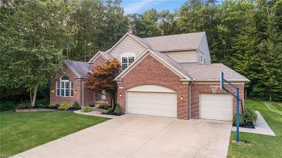 Broadview Heights Single Family Home For Sale: 280 Wilmington Drive