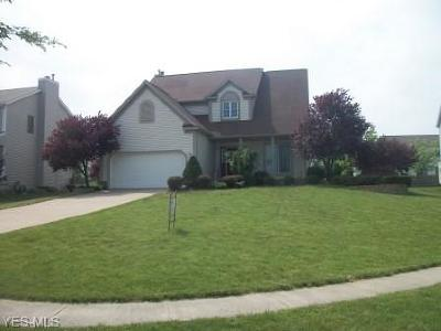 Wadsworth Single Family Home For Sale: 310 Wintercreek Circle