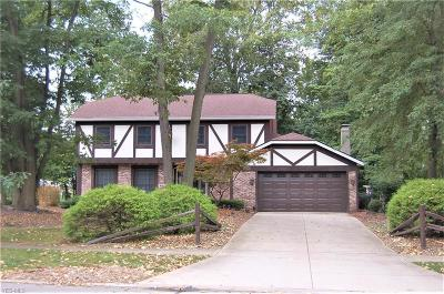 Strongsville Single Family Home For Sale: 16999 Hunting Meadows Drive