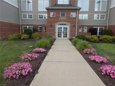 Condo/Townhouse For Sale: 23003 Chandlers Lane #217