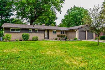 Stark County Single Family Home For Sale: 623 Summit Street