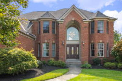 North Royalton Single Family Home For Sale: 17344 Creekside Circle