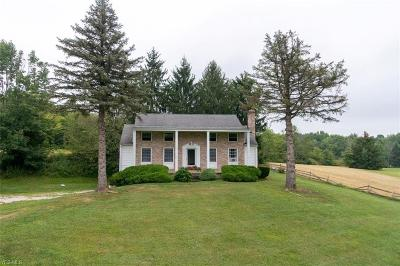 Garrettsville Single Family Home Active Under Contract: 11350 State Route 88