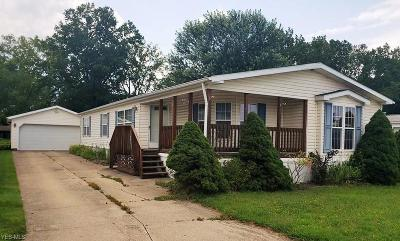 Painesville Single Family Home For Sale: 345 Golfway Drive