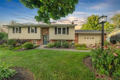 Single Family Home For Sale: 1675 Denwood Street