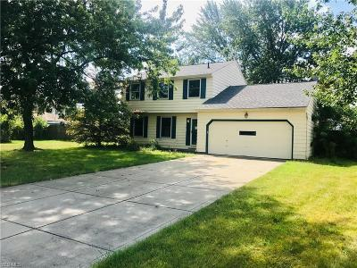 Strongsville Single Family Home For Sale: 16699 Lanier Avenue