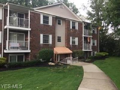 Twinsburg Condo/Townhouse For Sale: 10760 Ravenna Road