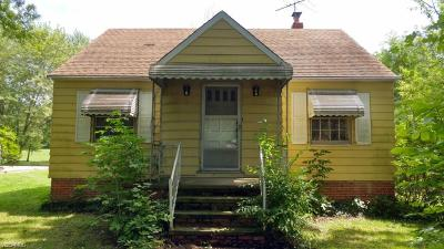 North Royalton Single Family Home For Sale: 12617 W 130th Street
