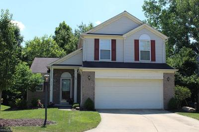 Northfield Single Family Home Active Under Contract: 696 Canterbury Lane