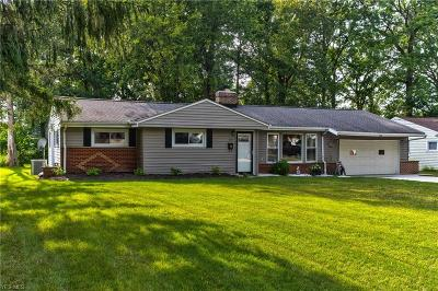 Painesville Single Family Home For Sale: 228 Coventry Drive