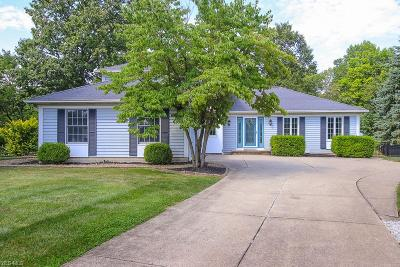 Olmsted Falls Single Family Home Active Under Contract: 7221 Pine Woods Way