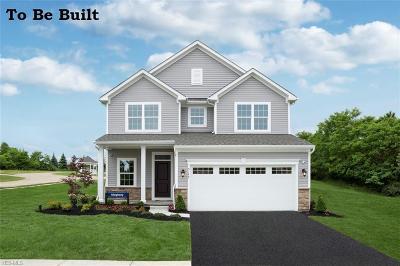 Aurora Single Family Home For Sale: 90 Lakeland Way