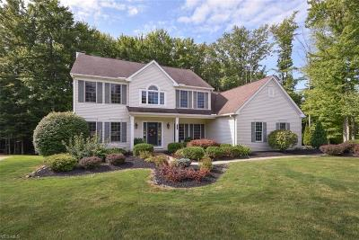 Broadview Heights Single Family Home For Sale: 1544 Newton Pass