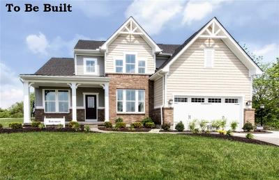 Lake County Single Family Home For Sale: 516 Prestwick Path