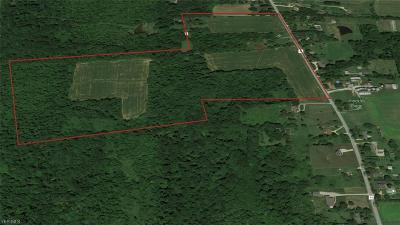 Hinckley Farm & Ranch For Sale: 1016 State Road