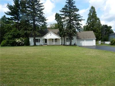 Youngstown Single Family Home For Sale: 784 McClurg Road