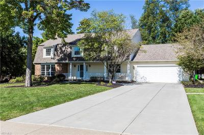 Highland Heights Single Family Home For Sale: 5955 Castlehill Drive
