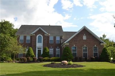 Broadview Heights Single Family Home For Sale: 1103 Fireside Trail