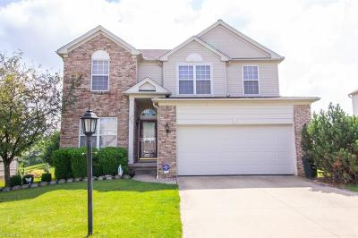 Broadview Heights Single Family Home For Sale: 599 Lenox Court