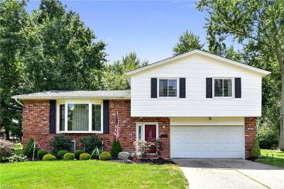 North Olmsted Single Family Home For Sale: 29659 Huntington Drive