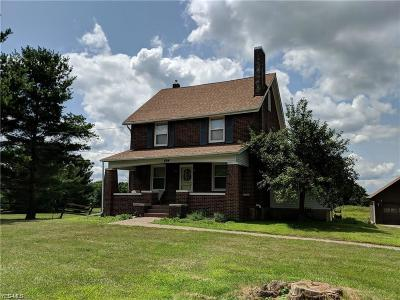 Vienna Single Family Home For Sale: 404 Niles Vienna Road