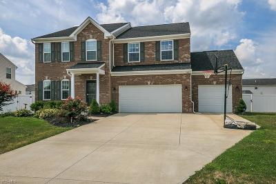 North Ridgeville Single Family Home For Sale: 7318 Warblers Lane