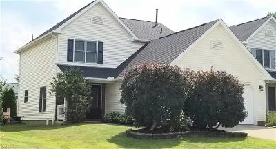 Medina Single Family Home For Sale: 1046 Millbury Drive