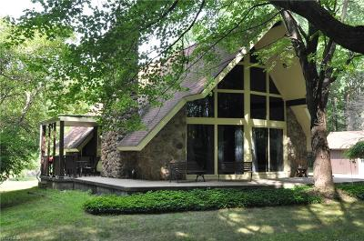 Canfield Single Family Home For Sale: 8240 Blue Heron Drive