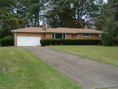 Youngstown Single Family Home For Sale: 463 Catherine Street