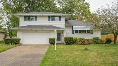 Seven Hills Single Family Home For Sale: 5705 Beacon Hill Drive