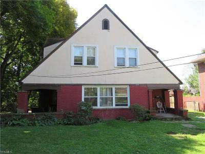 Youngstown Single Family Home For Sale: 425 Fairgreen Avenue