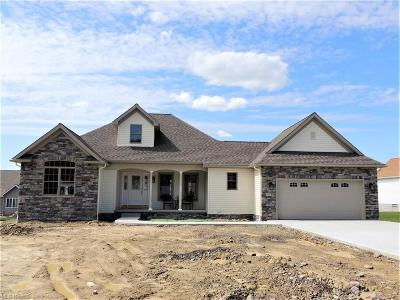 Canfield Single Family Home For Sale: 3962 Mary Way