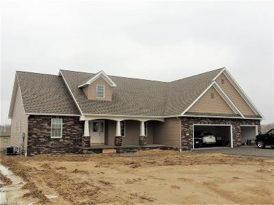Canfield Single Family Home For Sale: 3938 Mary Way