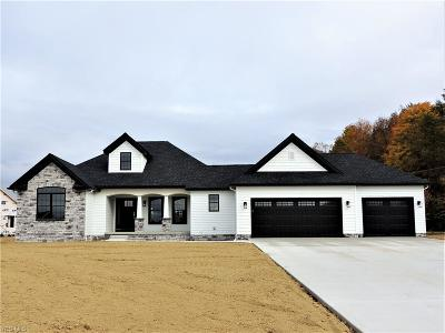 Canfield Single Family Home For Sale: 3937 Mary Way